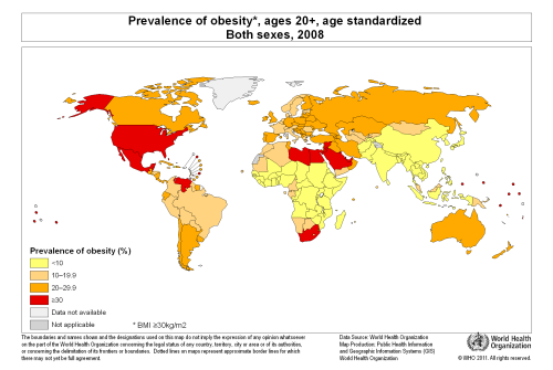 global obesity 2008 and physical literacy